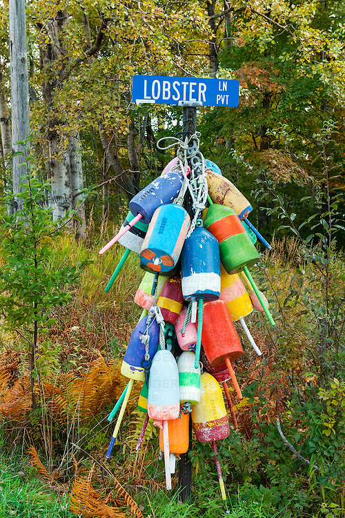 Lobster Lane buoys, Owls Head, Maine, USA