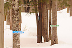 Trail sign on xc ski trail at Smuggler's Notch, Vermont.