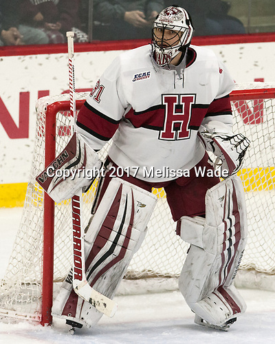 Merrick Madsen (Harvard - 31) - The Harvard University Crimson tied the visiting Yale University Bulldogs 1-1 on Saturday, January 21, 2017, at the Bright-Landry Hockey Center in Boston, Massachusetts.