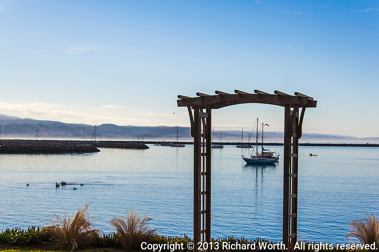 Lit by early morning light, pelicans, gulls and a  sail boat, framed by an ornamental park structure, float in Pillar Point Harbor at Princeton-by-the-Sea, Princeton, near Half Moon Bay on the California coast.