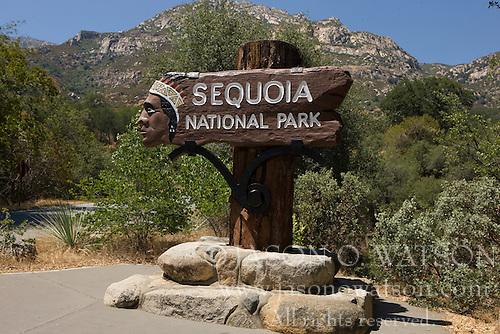 Национальный парк секвойя, сша фото