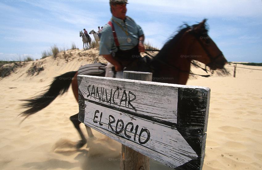 "A horseman rides past a sign to El Rocio and Sanlucar. The pilgrim route of the Hermandade de Sanlucar de Barrameda from Sanlucar across the Parque Donana to El Rocio, Huelva Province, Andalusia, Spain...El Rocio follows on from Semana Santa - Easter week and the various spring ferias, of which Seville's Feria de Abril (April) is the biggest. The processions to the (Hermitage) Hermita de El Rocío, at Pentecost, is the most famous (Romeria) pilgrimage in the Andalusian region, attracting nearly a million people from across Andalusia, Spain and the world. The cult started off in the 13th century when a statue of the virgin Mary was apparently found in a tree trunk in the Donana Park. What was first a local devotion at Pentecost by local pilgrim brotherhoods ""hermandades"" became by the 19th century into dozens of fraternities developed from such as Cadiz, Selville and Huelva. Some walk for several days, others travel with oxen drawn wagons or on horseback, with traction engines and all terrain vehicles, camping along the trail they take. They wear Andalusian costumes, tight breeches, boots, short jackets and frilly flamenco skirts. Many festivities, flamenco dance, laments, songs and music are combined with religious prayers. Devout pilgrims walk as a penance, keeping vows of silence. An emblem of the immaculate conception (sin peche) is carried. On the Pentecost after the stroke of midnight on the whit Sunday the virgin Mary is carried from the church through the streets of El Rocio by each hermandade to visit each brotherhood's shrine."