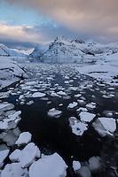 Ice floats in water at Flakstadpollen, Flakstadøy, Lofoten Islands, Norway