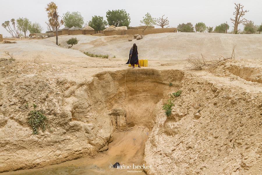 Collecting Water. Scarce water supplies during the dry season. Katsina State, Nigeria.