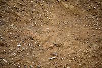 BOGOTÁ-COLOMBIA-14-01-2013. Textura en tierra y piedra./ Earth and stone texture. Photo: VizzorImage/STR