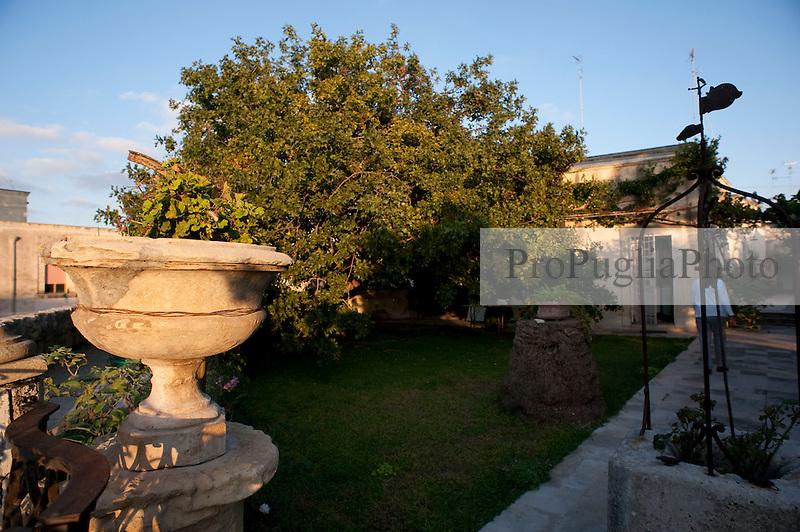 Lecce 20 ottobre 2010..Giardino sul terrazzo di un antica villa ...