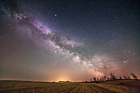 The summer Milky Way rising late on a spring night over a fallow wheatfield in spring, 2013. Taken from home, May 6, 2013, with the Canon 5D MkII and Samyang 14mm lens at f/2.8 for a stack of 5 x 2.5 minute exposures at ISO 1600, all tracked on the iOptron Sky-Tracker. The ground is from one exposure. Taken from a latitude of +50&deg; so Scorpius at right and Sagittarius right of centre are skimming the southern horizon.