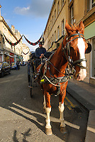 Horse and carriage, Bath, UK, October 20, 2007. The city of Bath is famed for it's hot springs (the only in the UK) and it's Georgian architecture. The city is a UNESCO World Heritage Site.