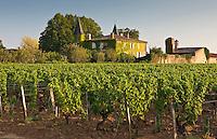 Chateau Coutet, Barsac region, Bordeaux, France.