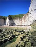 Flamborough Cliffs, Yorkshire