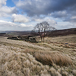 Top Withens, West Yorkshire, UK