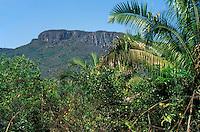 Plateau or tableland called chapada dominating wooded savanna vegetation called cerrado in Chapada dos Veadeiros, Brazil Highlands, Brazilian Shield, Planalto Brasileiro, Goias, Brazil