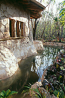 A pool with natural cenote water outside of one of the houses. Photos for Jasai´s catalogue of the houses of Memo and the surrounding area