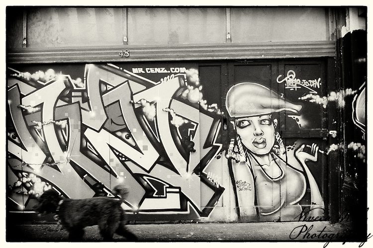Graffiti on a building in Crystal Palace, South London, with poodle passing by