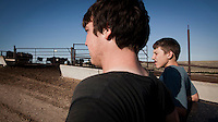 Cowboys look at penned herds of beef cattle in feedyard in Mead, Kansas. A feedyard is part of the factory farming process where animals are fattened up prior to slaughter. They are mostly fed on corn or corn dervived products gaining between 2.5 and 4.5 pounds per day. 25% of all American beef is produced in Kansas.