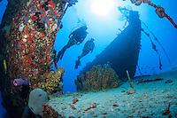 Wreck of the Rosaomaira.Butler Bay Deep Wrecks.St. Croix.U.S. Virgin Islands