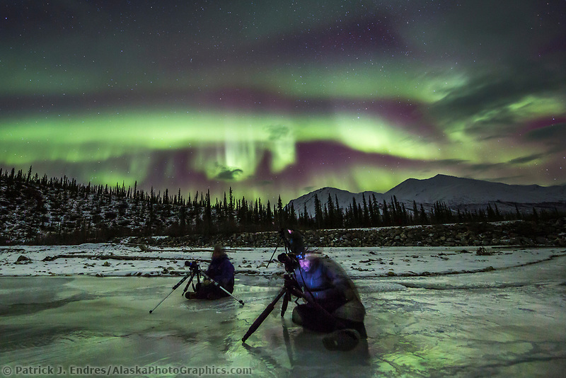 Photographers with tripods take pictures of the aurora borealis in the night sky in Alaska's Brooks range, arctic, Alaska