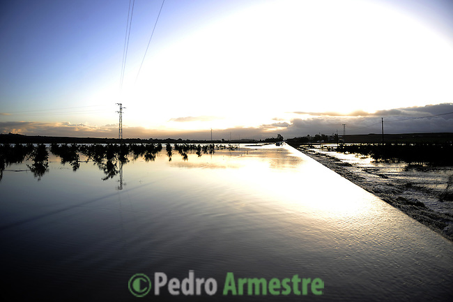 An agricultural field is seen flooded in La Ina, near Jerez de la Frontera in Cadiz is pictured after it was closed on january 05, 2010 for the heavy rain. (c)Pedro ARMESTRE.