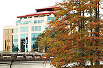 Fall Campus Scenery