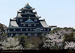 Okayama Castle Crow Castle from Korakuen Garden Okayama Japan