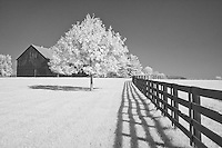 Barn and pasture at Keeneland, Lexington, KY.  Infrared (IR) photograph by fine art photographer Michael Kloth.