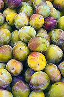 Flavor Grenade Pluots, Fresh Fruit