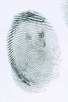 FINGERPRINT<br /> Loop<br /> A fingerprint is an imprint made by the pattern of ridges on the pad of a human finger. No two humans have ever been found to have identical fingerprints. The five most commonly used are: whorl, right loop, left loop, arch and tented arch.