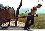 Worker pulling cart loaded with stone.Pictures taken in Canton China in 1977 at the time of the cultural revolution.