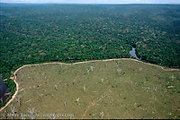 Pristine tropical rainforest along Rio Verde, Noel Kempff Mercado National Park, Santa Cruz, Bolivia, and cleared rainforest for cattle breeding, Rondonia, Brazil.
