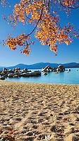 Autumn Leaves, Sand Harbor