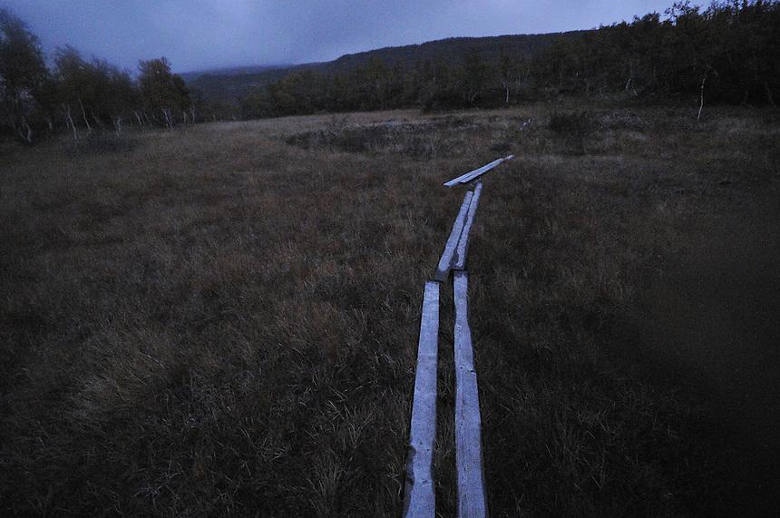 Autumn Forollhogna national park,Norway