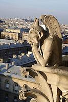 Stryge Chimera, Notre Dame de Paris, 1163 ? 1345, initiated by the bishop Maurice de Sully, Ile de la Cité, Paris, France. Picture by Manuel Cohen
