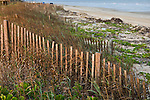 Dune fence on the beach at Quintana, near Freeport, Gulf of Mexico, Texas. fences designed to protect vegetation along the dune line.