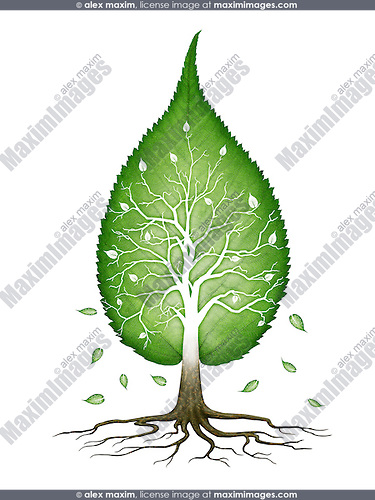 Green leaf shaped tree with branches and roots nature infinite fractals spiritual zen concept isolated on white background. Conceptual photo illustration.