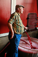 Domaine du Vissoux, Beaujolais.fermenting grape juice being tested for sugar and alcohol content...September 17, 2007..Photo by Owen Franken for the NY Times.
