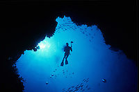 Scuba Diver Silhouette