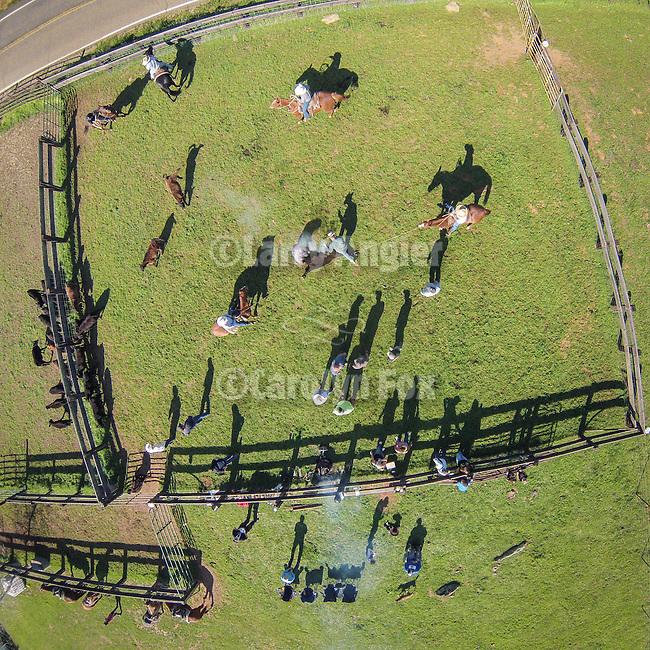 Drone/sUAV aerial photography
