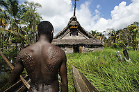TThe Sepik River, Papua New Guinea.<br /> The respect for the river is immense. This is most apparent through the tribe&rsquo;s reverence of the exquisitely crafted, yet ominously daunting, Sepik spirit houses. Men, especially of this Blackwater region, are isolated for over a month of initiation practices while receiving the crocodile tattooing. The initiates, ranging from adolescent to adults, succumb to sleep deprivation while entering an other-worldly mental state. They partake in feasts and are coached in the secrets of their elders. <br /> After two weeks of rituals the elders inflict deep painful gashes with razor blades into the backs and chests of the men. The bleeding symbolizes the draining of their mother&rsquo;s blood in order to make them stronger. The open wounds are packed in mud, silt and exposed to smoke, so they will keloid, giving the scars a raised emulation of the crocodile skin. Their scars are a badge of honor and a proud symbol of their finality into manhood.