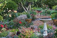Sally Robertson's California cottage garden
