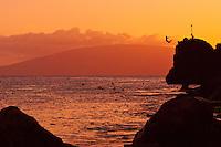 Sunset cliff diving off of Black Rock at Ka'anapali Beach, Maui