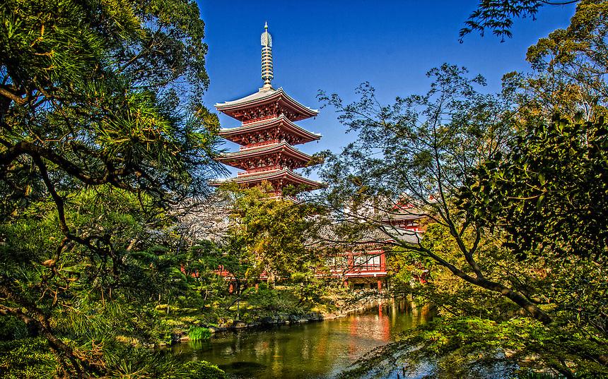 Asakusa Denboin gardens