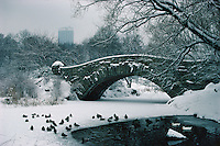 NYC, NY, Central Park, Gapstow Bridge, designed by Howard &amp; Caudwell in 1896, Park designed by Frederick Law Olmsted and Calvert Vaux, Pond, Winter