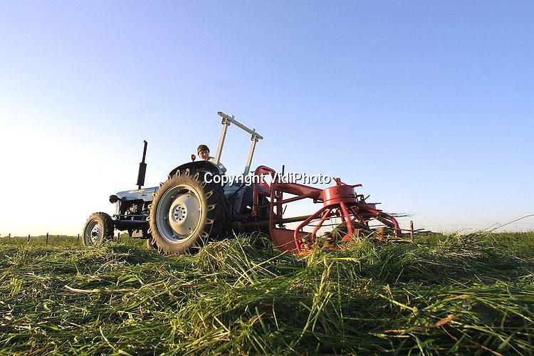 Foto: VidiPhoto..HOMOET - Met een 40 jaar oude Ford Dexta, een even ouderwetse strela (schudmachine) en een gangetje van slechts enkele kilometers per uur, schudt Jacomien Evers uit het Betuwse Homoet het gras op het 1 hectare grote weiland voor haar woning. Het veevoer is voor haar broer Johan Vermeer, die een boerderij in Markelo heeft. Het kost de boer vijf uur rijden met de tractor om de geperste balen van 500 kilo op te halen.