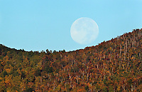 The setting moon appears to roll along the ridge of old ragg mountain in Madison County, Va. Photo/Andrew Shurtleff