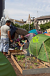 Garden and campers at protest camp at Placa de Catalunya, Barcelona, Spain. The signs read: &quot;Animals and music will make you a better person; put a dog and a flute in your life&quot;. The square has been relatively quiet since police attacked and beat protestors on May 27 2011.