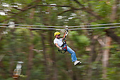 Zip-lining through the air and rainforest with Kohala Ziplining in North Kohala on the Big Island.