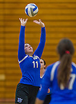 1 November 2015: Yeshiva University Maccabee Setter, Defensive Specialist, and team co-Captain Aliza Muller, a Senior from Los Angeles, CA, sets against the SUNY College at Old Westbury Panthers at SUNY Old Westbury in Old Westbury, NY. The Panthers edged out the Maccabees 3-2 in NCAA women's volleyball, Skyline Conference play. Mandatory Credit: Ed Wolfstein Photo *** RAW (NEF) Image File Available ***