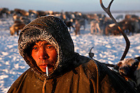 A Nenets herder near Naryan-Mar smokes a cigarette, his reindeer are behind him. The Nenets are the original inhabitants in the Russian Arctic but have been displaced by both Soviet-era collectivisation and modern gas and oil exploration. Reindeer provide the Nenets with food, shelter and clothing. They sell reindeer meat to sausage factories and the antlers to China for use as traditional medicine. /Felix Features