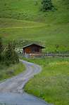 Country track used by farmers. Imst district, Tyrol/Tirol, Austria, Alps.