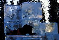 Ice sculptor at the World Ice Art Championships in Fairbanks, Alaska.